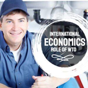 International Economics Online Certification Course
